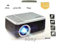 Portable Movie Projector Built in DVD Player